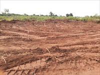 Land at Iyana Ipaja Lagos