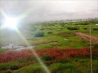 Land at Gaduwa Abuja