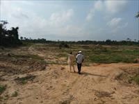 200 Acres of Land  For Sale