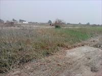197 Plots of Land  For Sale