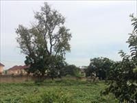 1 Hectares of Land  For Sale