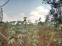 Land at Awka Anambra