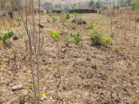 Land For sale at Apo, Abuja