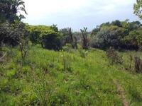 Land For sale at Oru, Imo