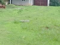 Land For sale at Asokoro, Abuja