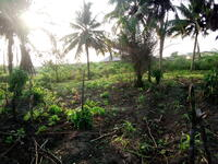 Land For sale at Mowe, Ogun