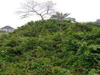 Land For sale at Obio, Rivers