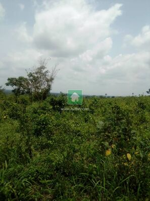 A Latent 10 Plots Of Land For Sale, Ifo, Ogun